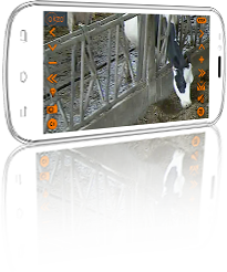 Smartphone avec application Okzo